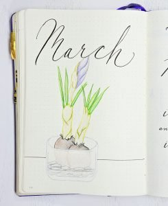 March drawing bulbs in vase