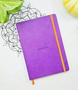 picture of rhodiarama in purple