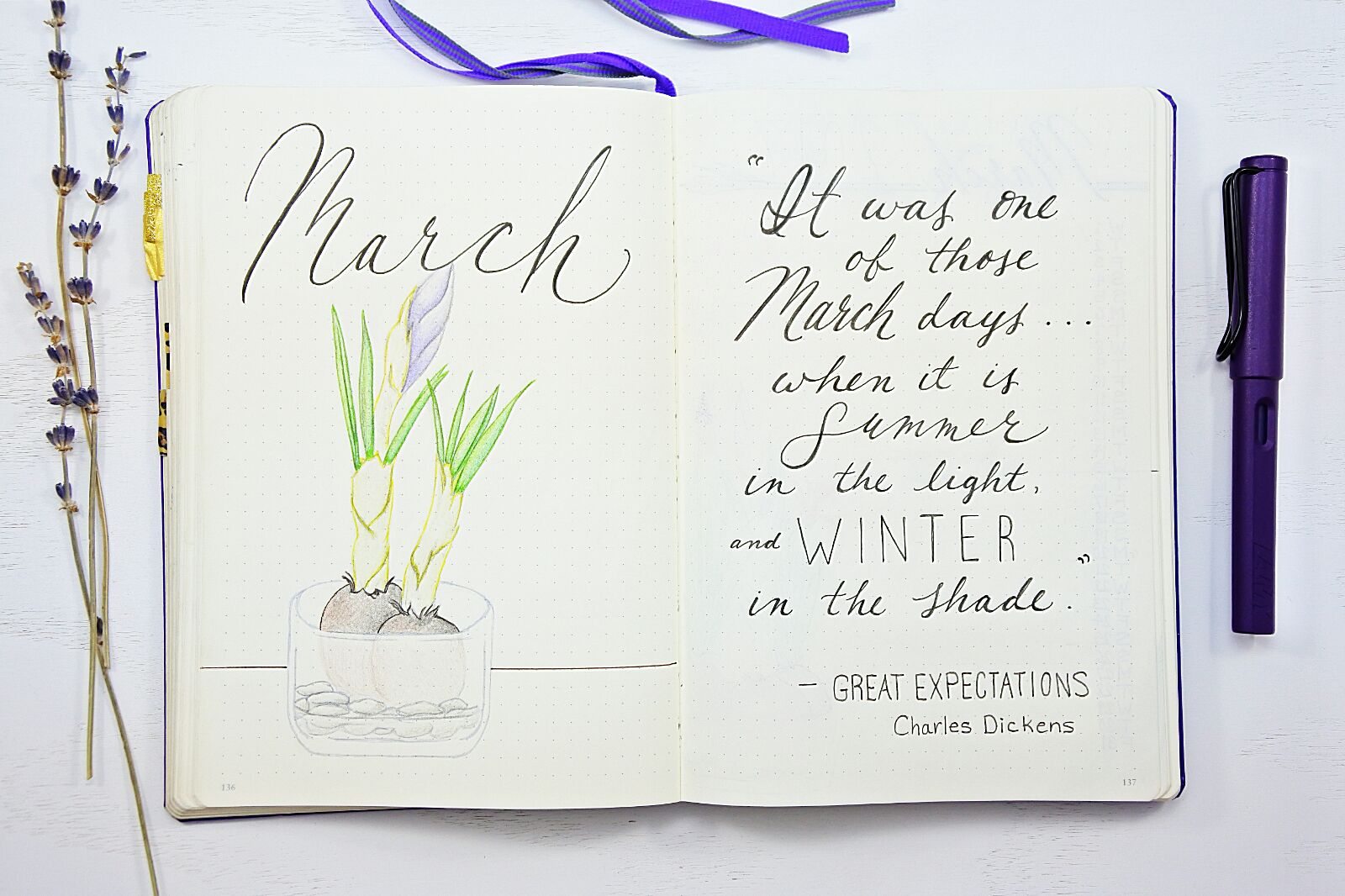 Bullet Journal March Setup With 6 Free Printables Sheena Of The