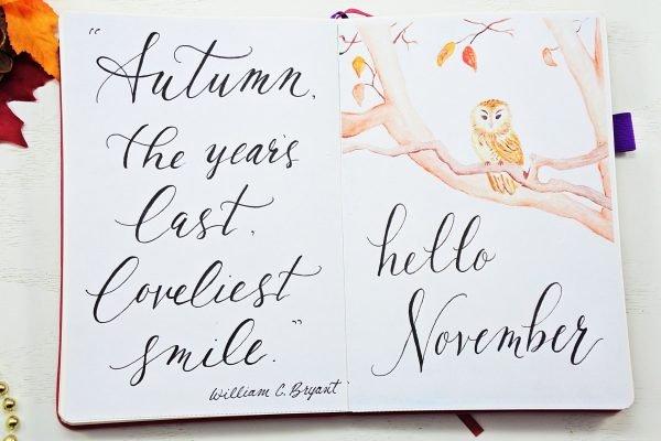 november bullet journal monthly