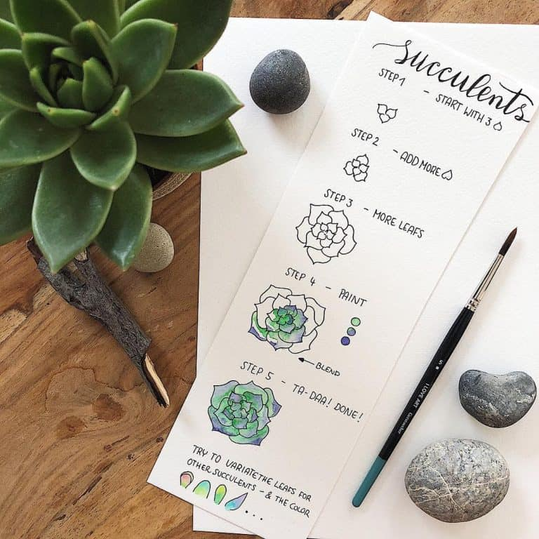 How to draw a succulent as an easy bullet journal doodle.