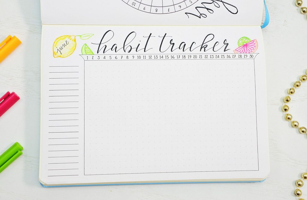 Citrus bullet journal habit tracker