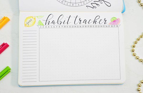 Citrus bullet journal habit tracker
